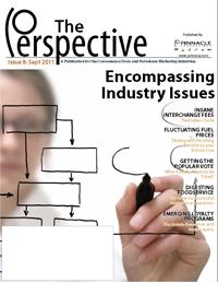 perspective issue 8